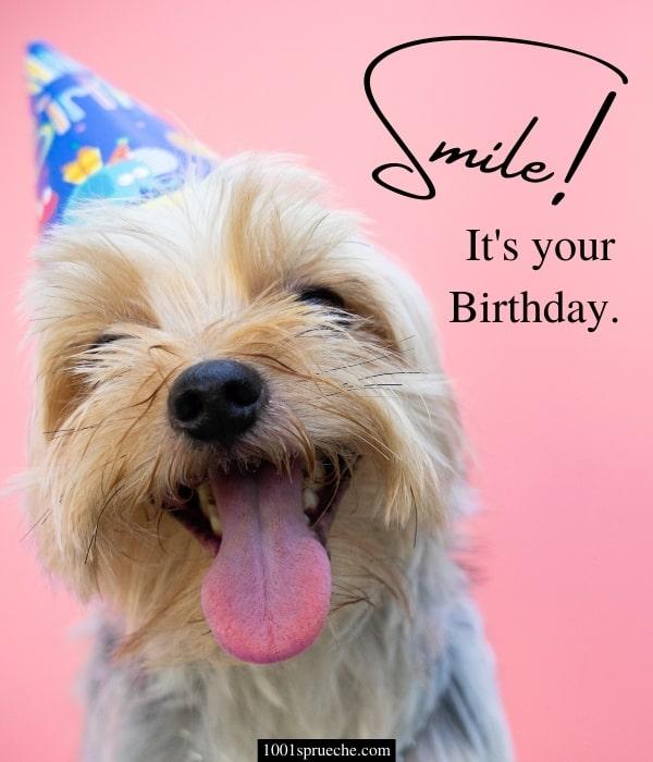 Lustige kurze Geburtstagswünsche: Bild zum Verschicken