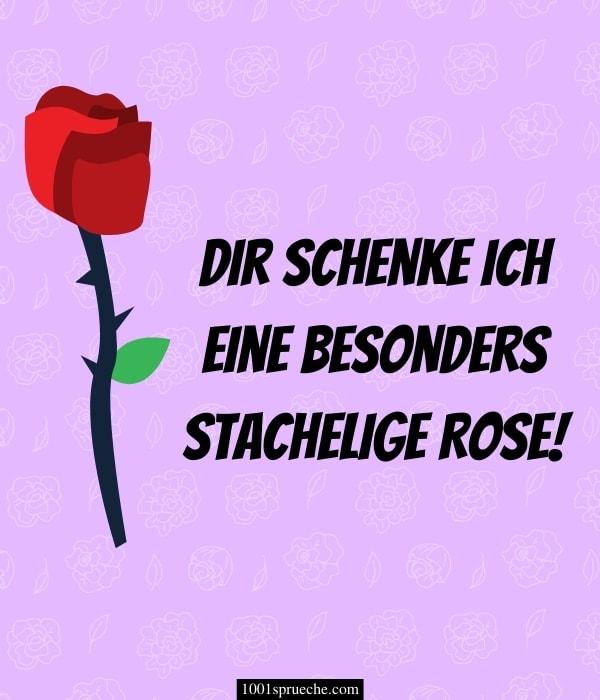 Lustige Valentinstag Sprüche (Anti Valentinstag)